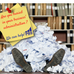 Buried in paperwork? Let us help!