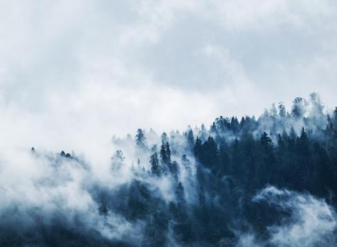 Om Kierkegaard: Angst er følgen af friheden til at vælge
