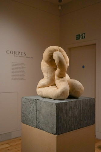Corpus: The Body Unbound at The Courtauld Gallery