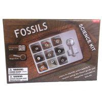 KM-Fossil-200x200