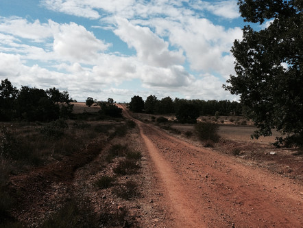 REFLECTIONS OF A PILGRIM: 1 YEAR AFTER THE CAMINO
