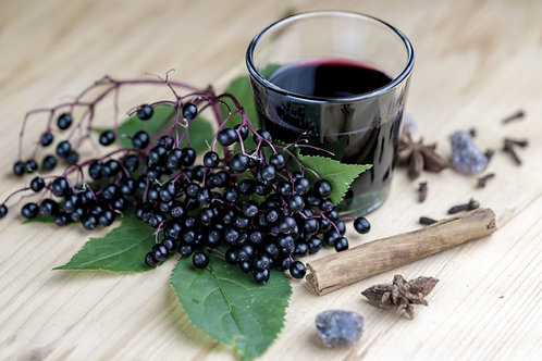 Elderberry w/ Echinacea and Goldenseal (Adults)