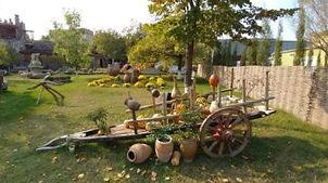 Шуми Цинандали Грузия24.jpg