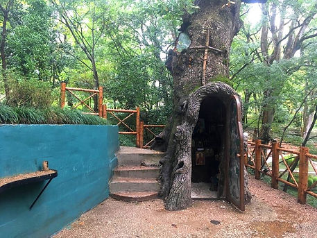 Кутаиси Ботанический Сад.jpg