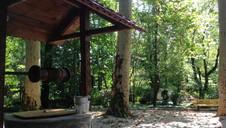 Ботанический Сад Кутаиси.jpg