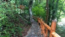 Ботанический Сад Кутаиси Грузия24.jpg