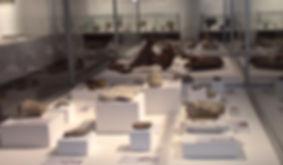 Мартвили Музей.jpg