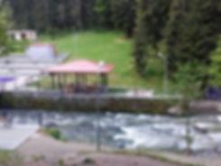 Парк Боржоми Грузия.jpg