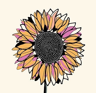 Sunflower | Hand-drawn | Flower | Line D