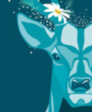 Wild Spirit Illustrator 2.jpg