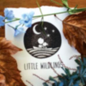LittleWildlings_Logo.jpg