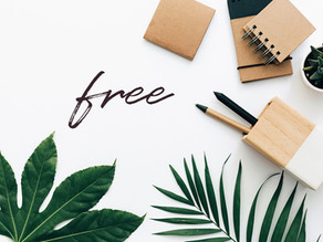 Free Support Local Design For New Zealand Businesses (no strings)