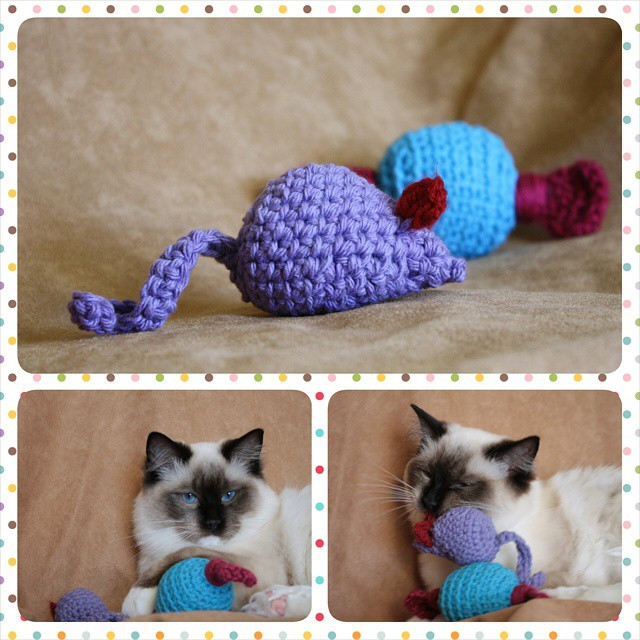 Instagram - Check it out, y'all! Mom's handmade catnip toys just keep multiplyin