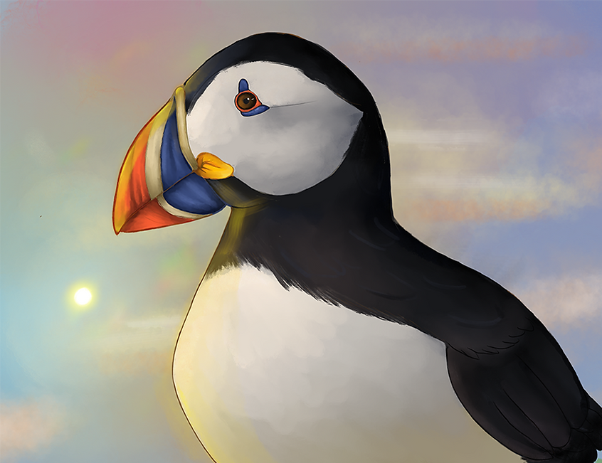 puffin_edited_edited.png