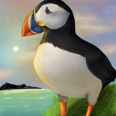 puffin_edited.png