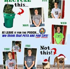Week 17 Dec 7-11
