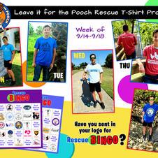 Week 6 Sep 14-18