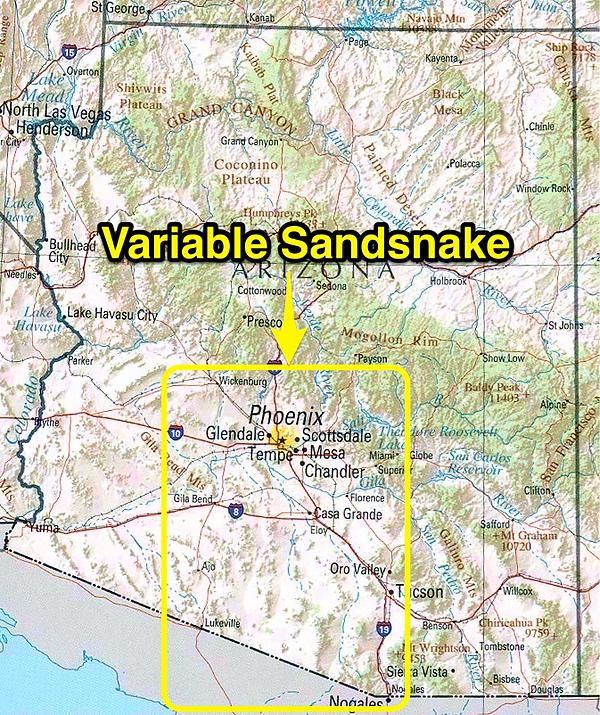 Variable Sandsnake range