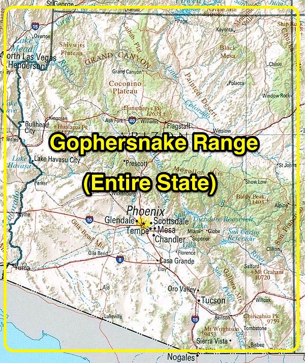 Gophersnake range
