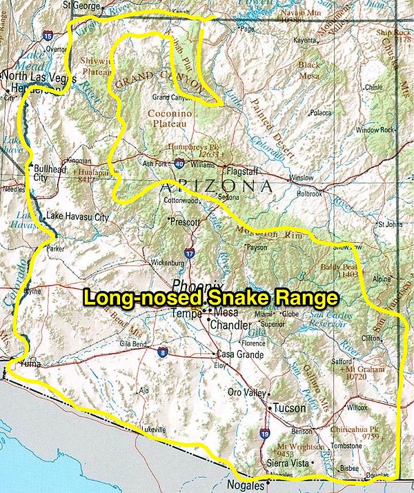 Long-nosed snake range