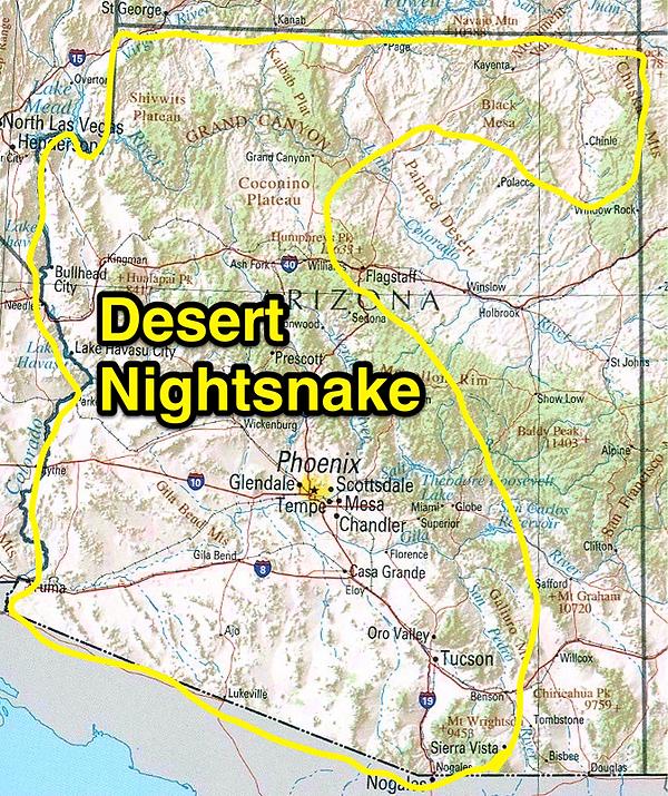 Desert Nightsnake range