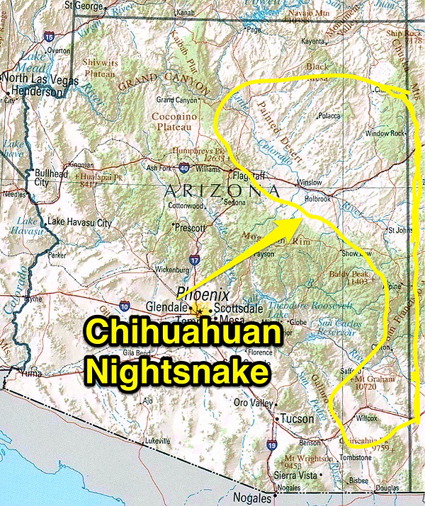 Chihuahuan Nightsnake range