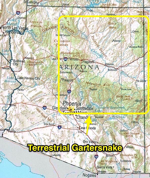 Terrestrial Gartersnake range