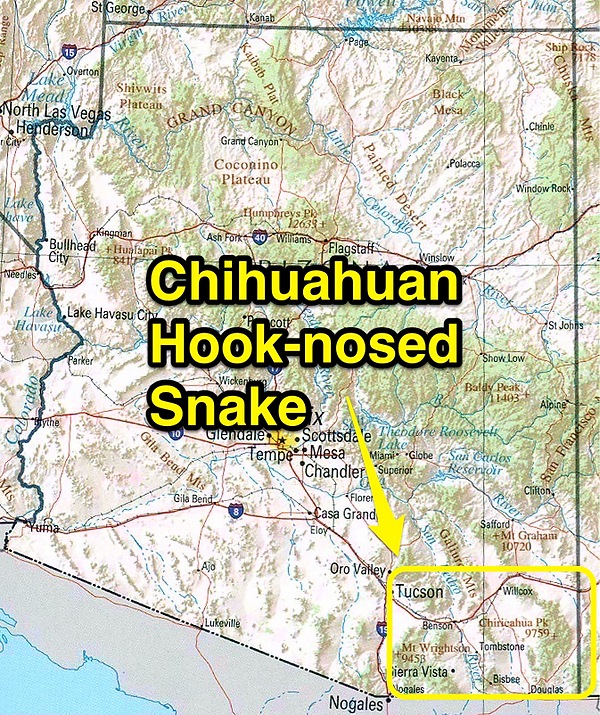 Chihuahuan Hook-nosed Snake range