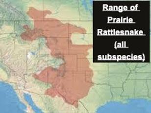 Prairie Rattlesnake Range ALL