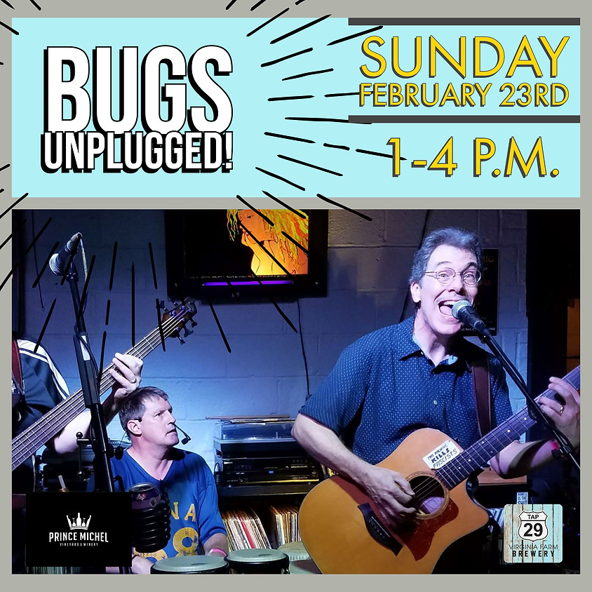 Live Music by Bugs Unplugged!