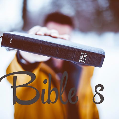 Bible 8