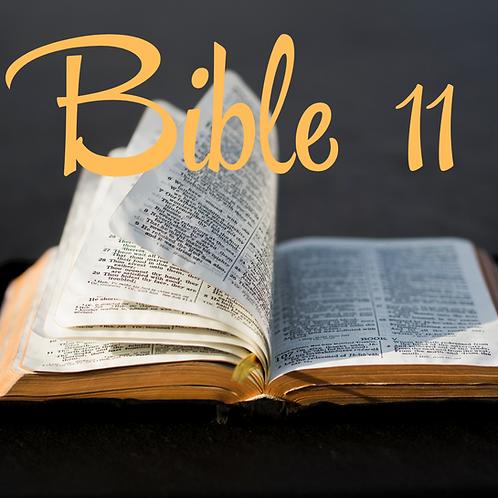 Bible 11