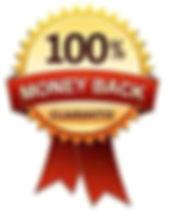optimized-100% MONEY BACK.jpeg