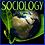 Thumbnail: Intro to Sociology