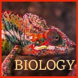 biology.png