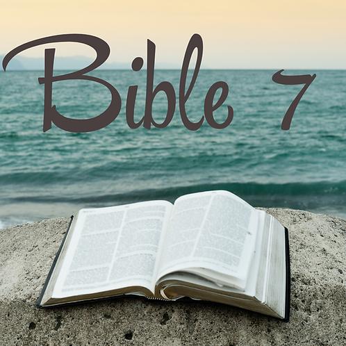 Bible 7