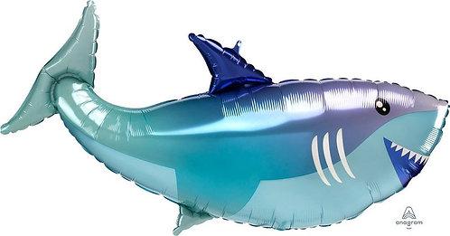 Shark - 38 inch
