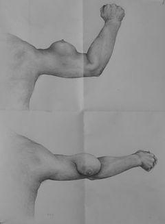 Emmanuel depoorter drawing pencil female arm