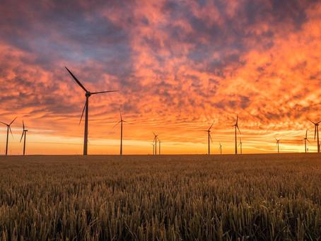 Ралли Акций Возобновляемых Источников Энергии  На Фоне Новых Обязательств По Нулевым Выбросам