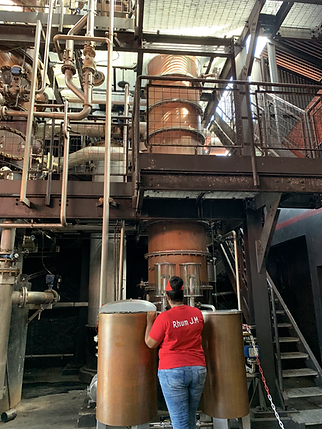 JM distillery (20).HEIC