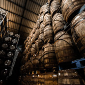 St Lucia Distillers_ Cellars (2).jpg