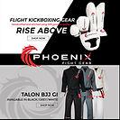 Phoenix website ad.jpg