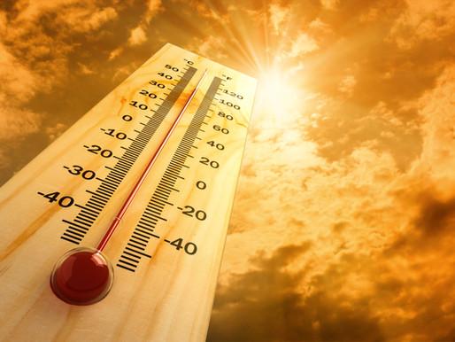 Navigating Hot Weather