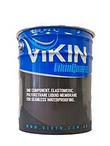Vikinguard_edited.jpg