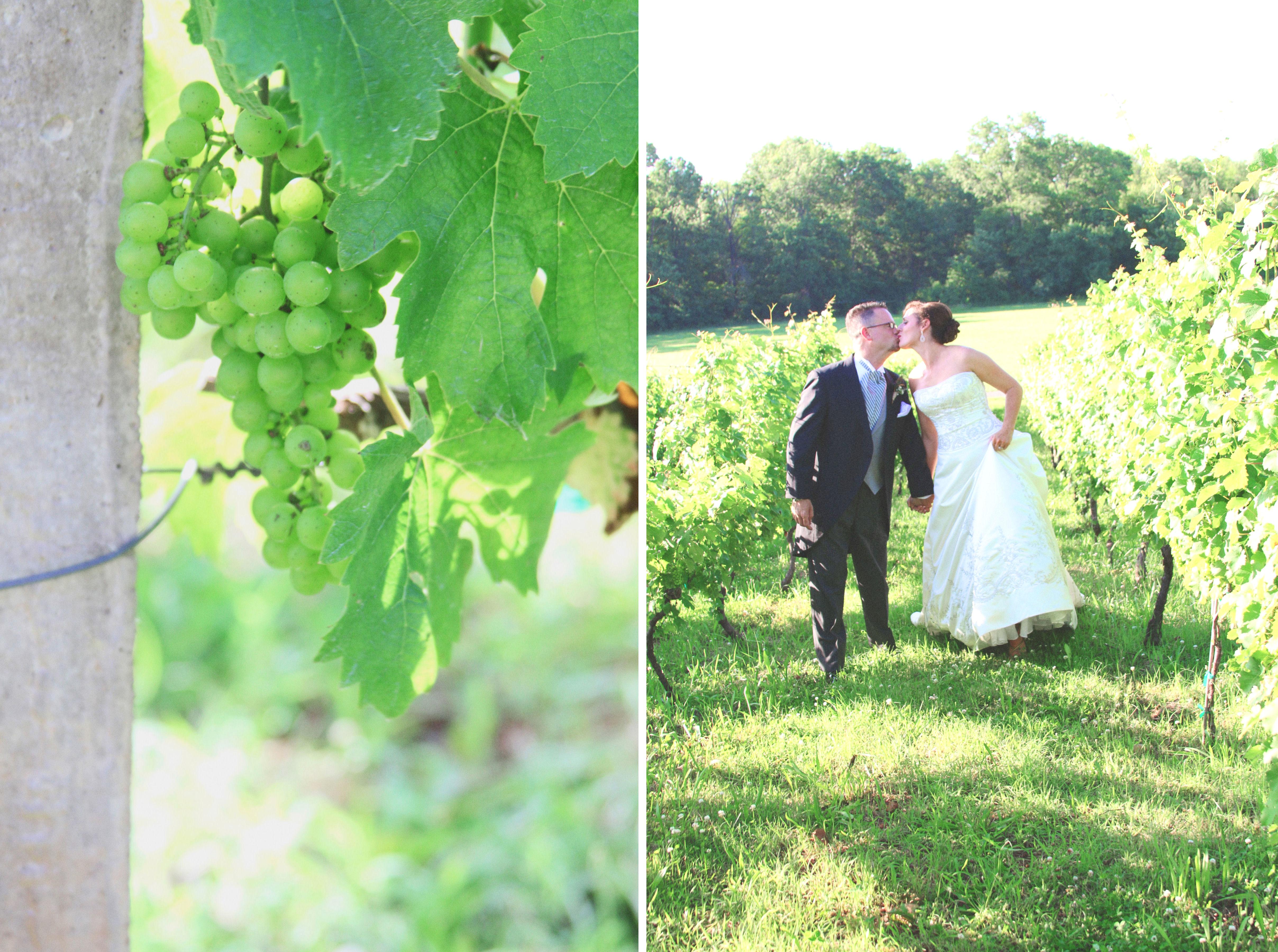 Sarasota, FL Wedding Photography