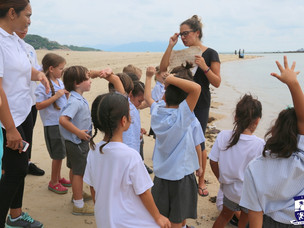School trip: Year 1 goes to the beach!
