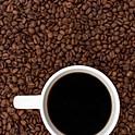 Regular Coffee (Drip) - 12oz