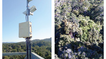 I spy: Enhanced camera network to track environmental change