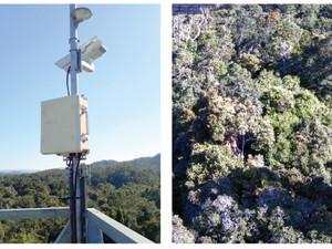 I spy: Enhanced camera network to track environmental change