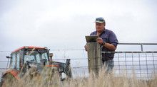 Big data and online tools improve farms from the ground up